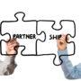 Director, Strategic Partnerships (Tech) – Reston, VA